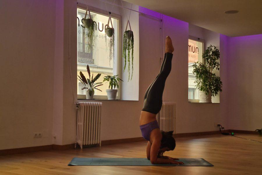 Taller: Pincha mayurasana y Vrschikasana, retos yoguis